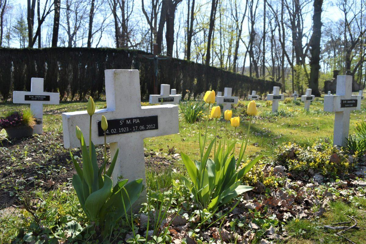 Le cimetière de l'abbaye